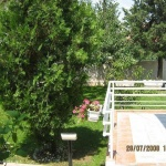 For Rent beautiful house in Crniche