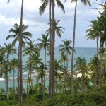Beach Land For Sale In Matara, Sri lanka