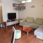 A fully furnished apartment for rent in the center
